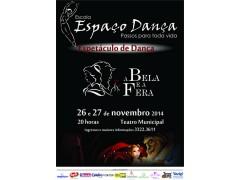Espetáculo de Dança 2014